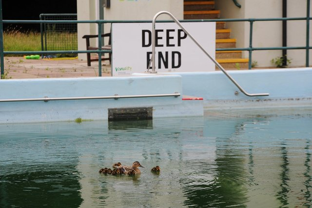 The Lido will re-open for the 2021 season