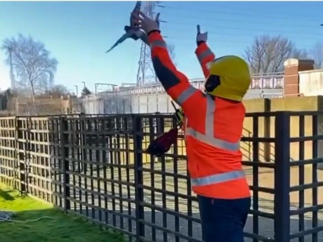 The bird is set free. Pic and video: Cambs Fire and Rescue