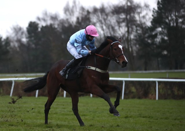 Eileendover with Paul O'Brien on board at Market Rasen. Photo: Getty Images.
