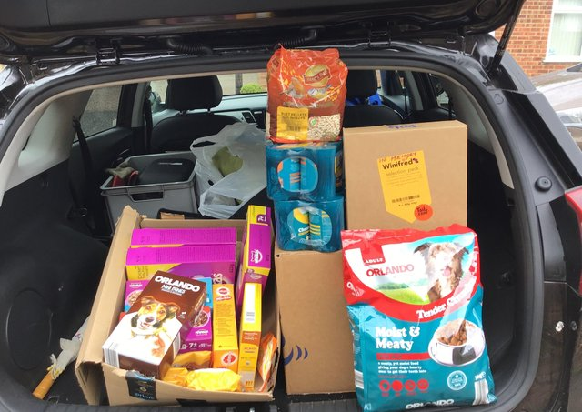 A car loaded with donations for the Exotic Pet Refuge