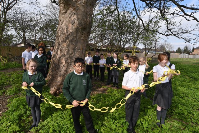 Pupils at Woodston primary school hanging yellow paper chains around  trees on the school field to remember one year since the first Covid 19 lockdown. EMN-210323-153121009