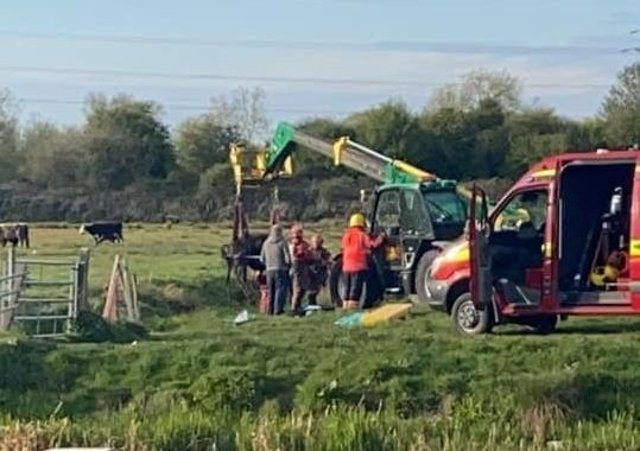 Rescue crews come to the aid of a cow in Stanground. Photo: Chantelle Joanne.