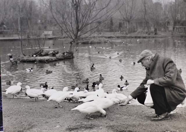 Peakirk Bird Sanctuary. Do you recognise anyone pictured?