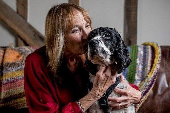 A Dogs Trust project that offers a temporary home for dogs to enable their owners to flee domestic abuse is helping people in Cambridgeshire and Peterborough